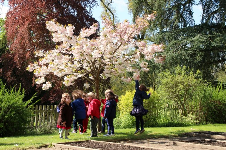 Farnham Best Nursery