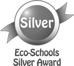 Eco award silver